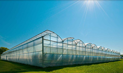 COMMERCIAL GREENHOUSES & NURSERIES